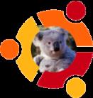 Ubuntu 9.10 Karmic Koala