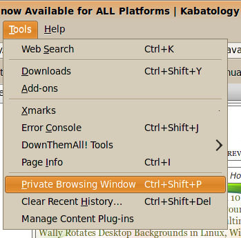 Private Browsing Window'