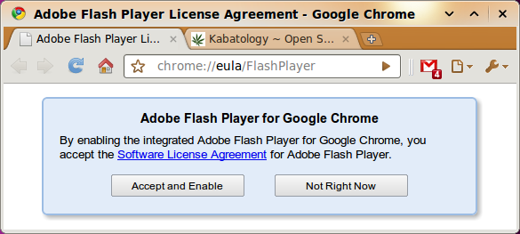 Google Chrome Integrates Flash Plug-In